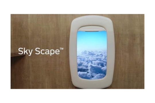 デジタル飛行機窓「Sky Scape」、デジタル盆栽アート「Terra Bonsai」発売開始